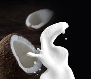 Coconut Milk Business with Low Investment